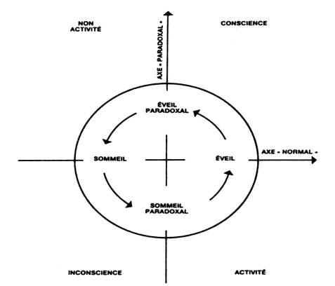 La conscience: Manifestations physiologiques en état méditatif et éveil Chap4Img01