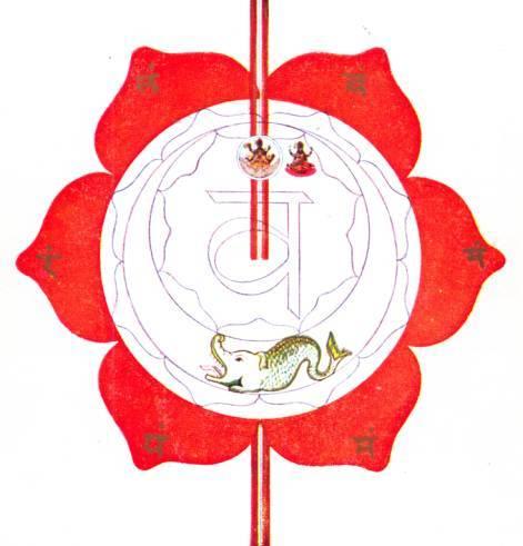 http://auriol.free.fr/yogathera/chakras/svadisthana/svadhishthana-symbol-avalon.jpg