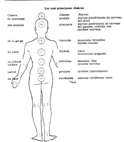 Favorit LES CENTRES D'ENERGIE PSYCHIQUES JR51