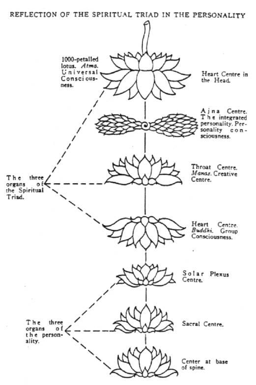 fleur de lotus signification. Black Bedroom Furniture Sets. Home Design Ideas